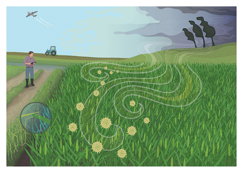 Factors influencing shifts in the biogeography of emergent plant pathogens © Flozbox/science.illustrated